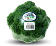brocoli-ecuador